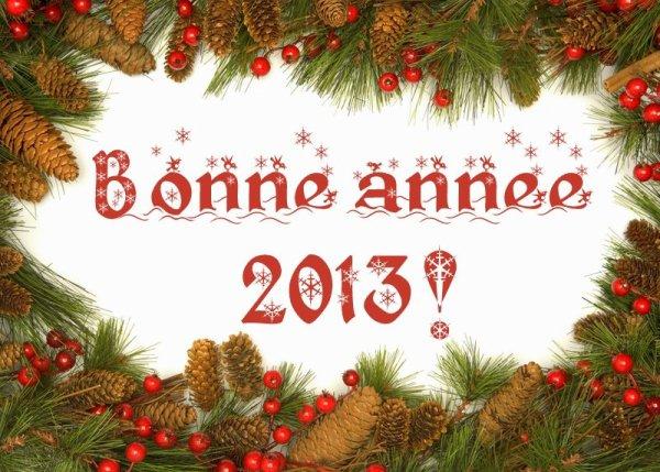 La Royale Amicale Cycliste Binchoise vous souhaite une bonne et heureuse année 2013.