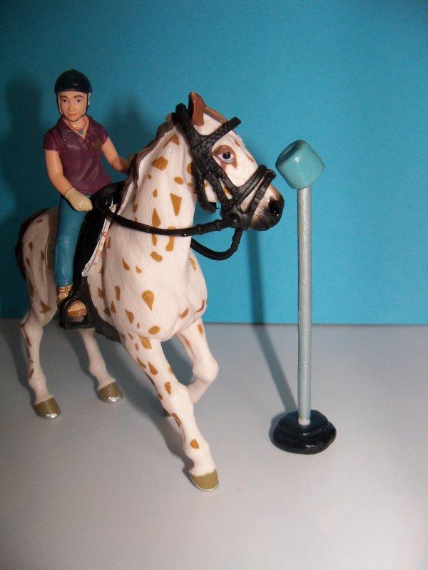 Présentation de mon Set Pony-games