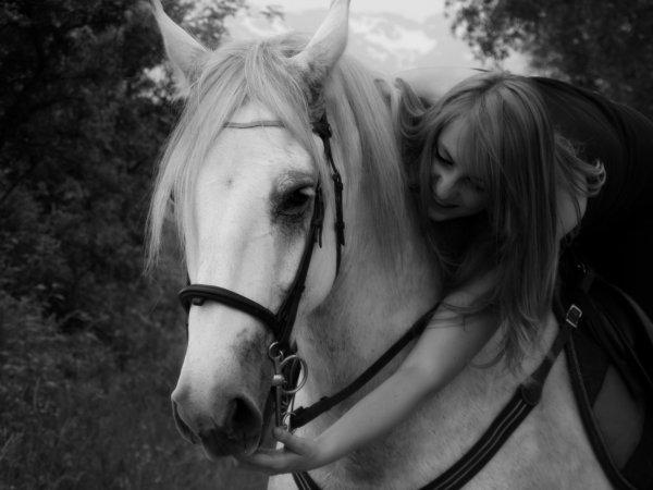 mon poney, roi des poneys ♥