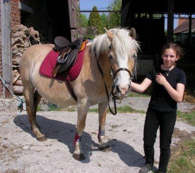 """Article 12 : """" Le cheval connaît à la bride celui qui le mène. """""""