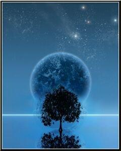 L'Humanité: Notre Apprenti-sage