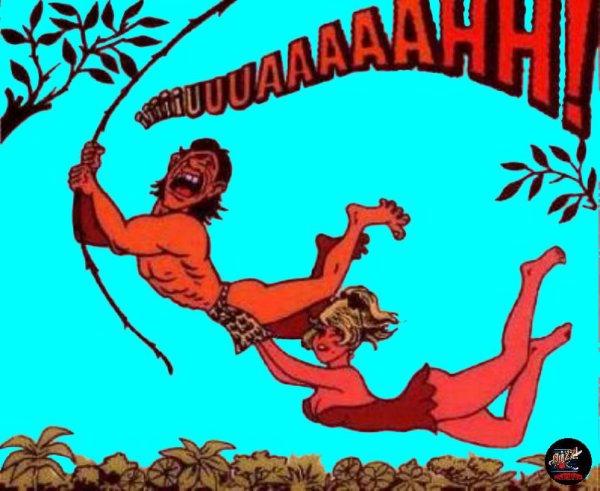 On comprend mieux maintenant L'origine du crie de Tarzan !