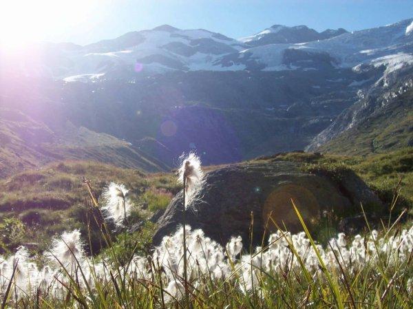 Passage au pied du cirque du Génépi et son glacier du même nom.