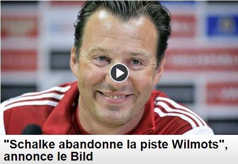 """""""Schalke abandonne la piste Wilmots"""", annonce le Bild"""