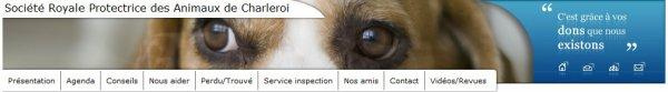 Qielques articles sur la protection des Animaux !