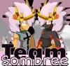 Team-Sombree
