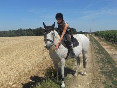 Etre heureux à cheval, c'est être entre ciel et terre, à une hauteur qui n'existe pas.♥
