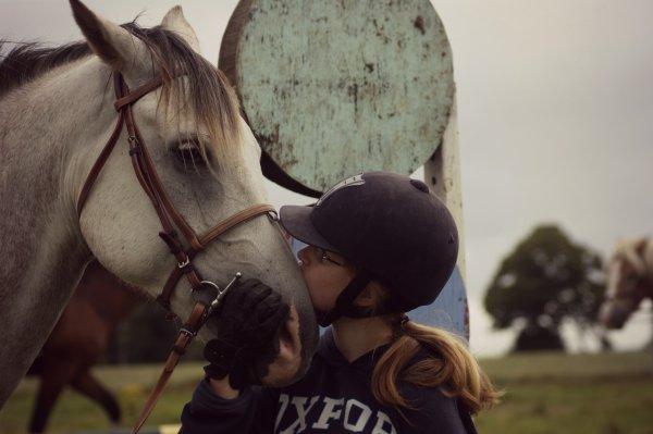 « Un cavalier, un cheval, on est des millions dans ce cas, sauf qu' il y a toi. »