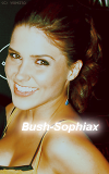 Photo de Bush-Sophiax