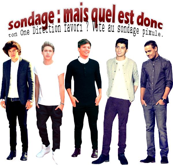 ':::::::::::::::::::::::SONDAGEEt si on tentait de départager les cinq garçons dans le vent, ouais, ceux des One Direction. Alors, lequel de ces cinq garçons imparfaits préférez-vous ? Plutôt boutonneux, effeminé ou autre ? HUMOUR.