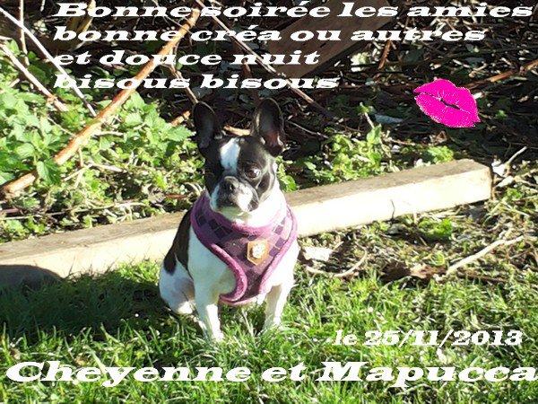 ♥ ♥ Ƹ̵̡Ӝ̵̨̄Ʒ ♥Ƹ̵̡Ӝ̵̨̄Ʒ ♥ Merci beaucoup Anne-Marie  ♥Ƹ̵̡Ӝ̵̨̄Ʒ ♥Ƹ̵̡Ӝ̵̨̄Ʒ ♥ ♥