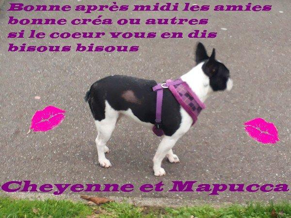 ♥ ♥ Ƹ̵̡Ӝ̵̨̄Ʒ ♥Ƹ̵̡Ӝ̵̨̄Ʒ ♥ Merci beaucoup Roselyne  ♥Ƹ̵̡Ӝ̵̨̄Ʒ ♥Ƹ̵̡Ӝ̵̨̄Ʒ ♥ ♥