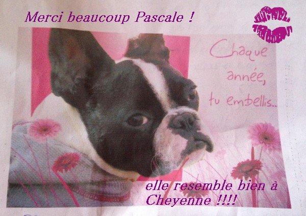 Merci beaucoup Pascale !!! c'est aussi pour mon anniv !!!