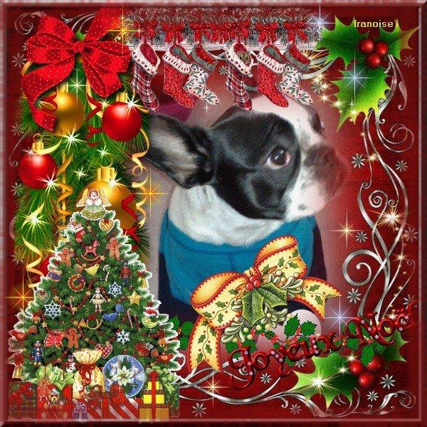 Merci pour ces beaux montage de Noël mes amies !!!!!