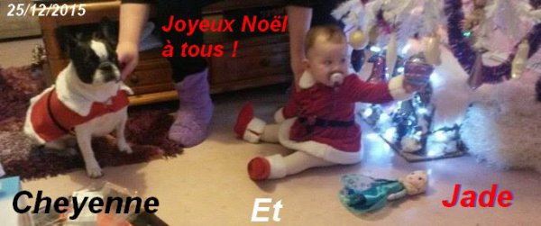 JOYEUX NOEL A TOUS BISOUS !!!!