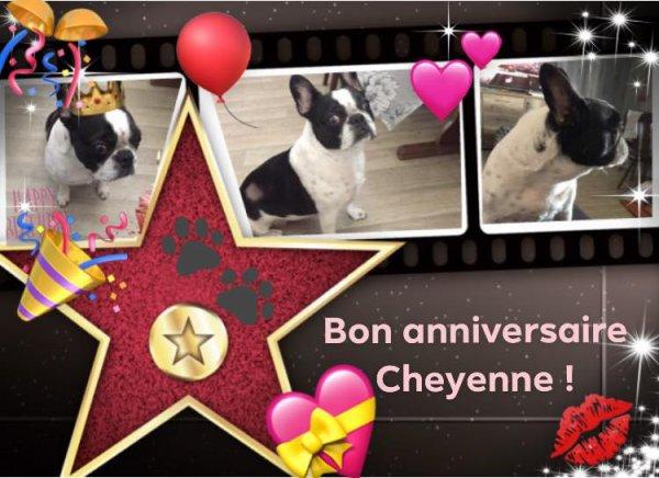 BON ANNIVERSAIRE CHEYENNE !!!!!