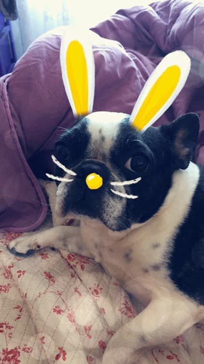Bonne fêtes de Pâque à tous !!!! bisous