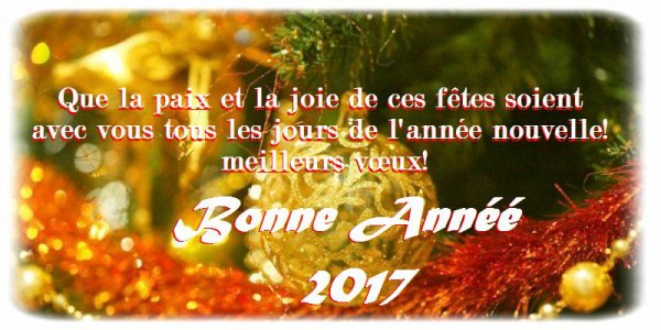 bonne et heureuse année 2017 a toutes et tous que le bonheur et l'amour soit présent pour cette nouvelle année !! bisous