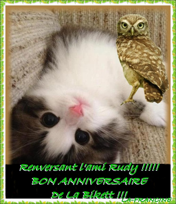 HAPPY BIRTHDAY TO YOU AMI RUDY !!!