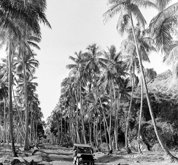 Slat grill en Nouvelle Calédonie 1942   -2-