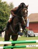 Photo de i-love-horse785
