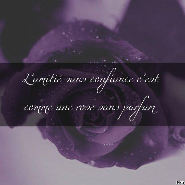 L'amitié sans confiance c'est comme une rose sans parfum
