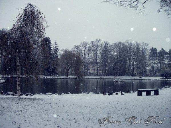 Janvier 2011