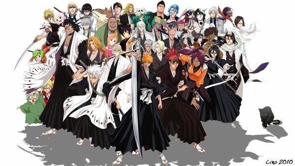 0 Les épisodes  0 Un arc narratif (ou story arc) est constitué d'une saison entière ou d'un groupe d'épisodes d'un manga qui constitue une histoire à part entière en s'appuyant sur une intrigue commune qui se développe au fur et à mesure. L'arc narratif se distingue d'un cycle qui clôt une intrigue dans une série. Un cycle peut être formé d'un ou plusieurs arcs. 0 Dernière sortie: Bleach 366 VOSTFR