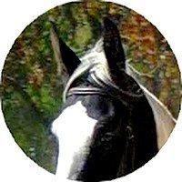 L`air du paradie &é celui qui souffle entre les oreilles d`un cheval .. C`est bien connu sa .!