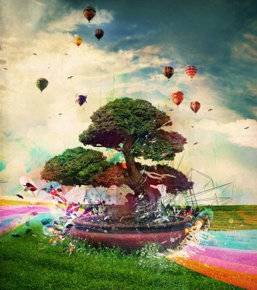 Reach the sky....