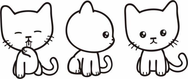 chaton en foli !!!!!!!!!!!!!!!!!!!!!!!!!!!!<3<3<3