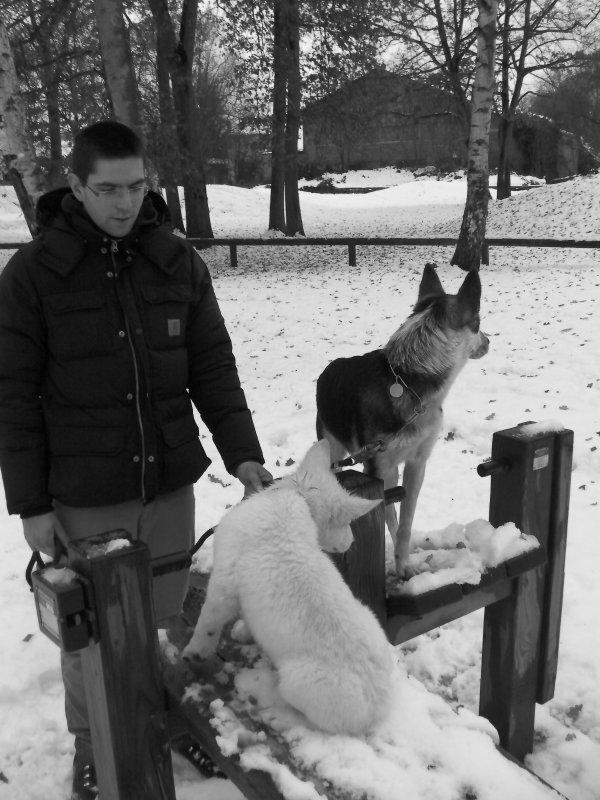 Sortie a la neige 19/12/2010 -suite-