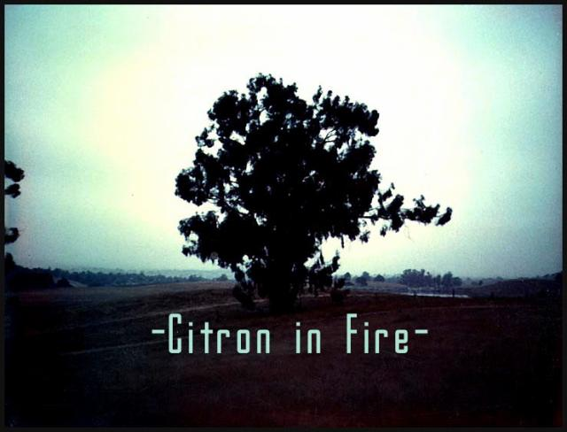 Citron in Fire