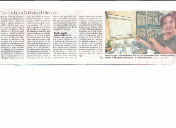article du journal