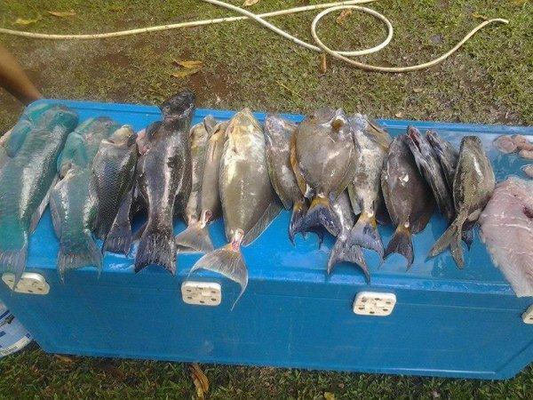 La pêche à Voh !!!