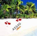 Photo de assad-35