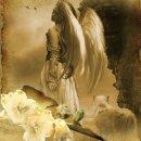 love-d-ange  fête ses 57 ans demain, pense à lui offrir un cadeau.Aujourd'hui à 20:05
