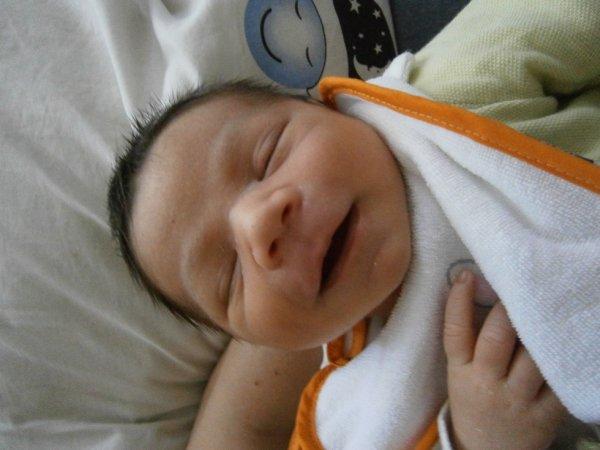 mon bébé évans , 15 jours en ce jour !!