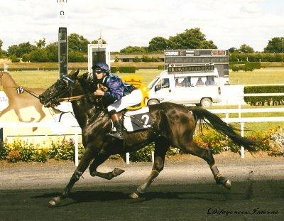 Equitation PLV & PQT ♥ » N'ai pas peur de tes reves, car ils sont l'oxygène qui te tient en vie.. «