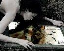 Photo de Journal-of-Leah