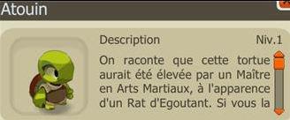 Donjon des Rats du Chateau d'Amakna