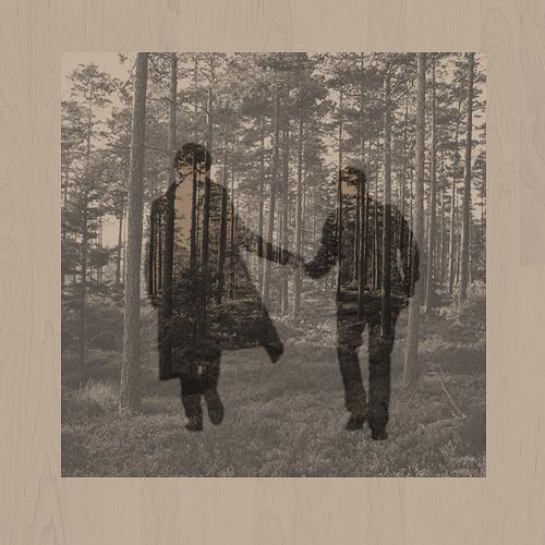 Promenons-nous dans le bois...