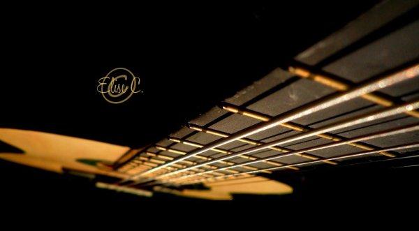 Thème : Instrument de musique