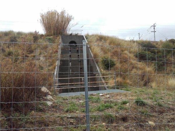 115245 - la ciste qui verra le bout du tunnel 2/2