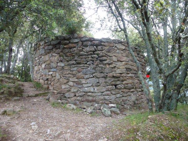127121 - le muselet qui débouche sur une tour 5) la tour, enfin