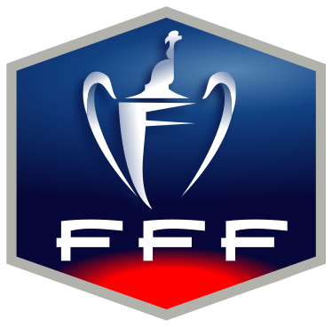 Coupe de France (2011)