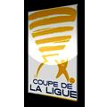 Coupe de la ligue (2011)
