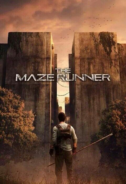 """The Maze Runner"""