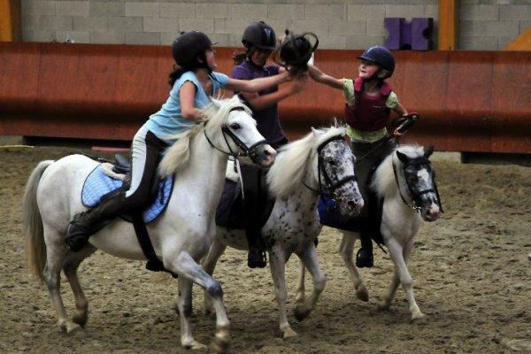 JOURNEE DU CHEVAL HORSE BALL