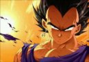 Photo de vegeta-48
